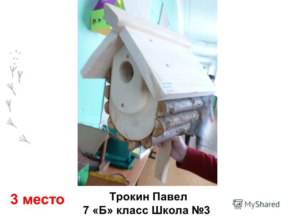 Трокин Павел 7 «Б» класс Школа 3 3 место