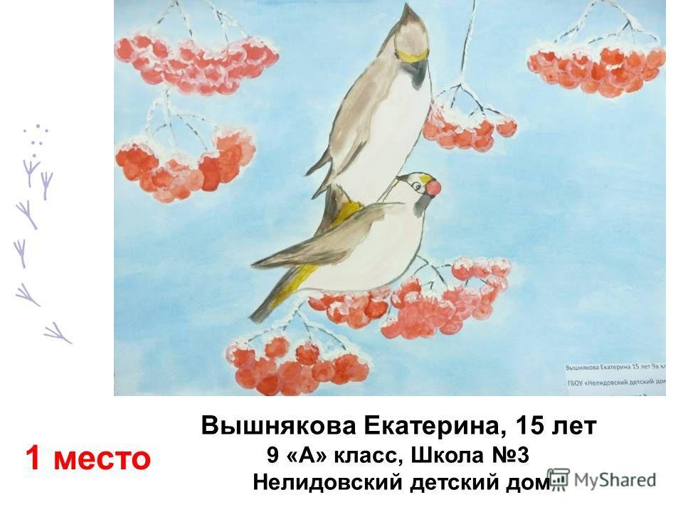 Вышнякова Екатерина, 15 лет 9 «А» класс, Школа 3 Нелидовский детский дом 1 место