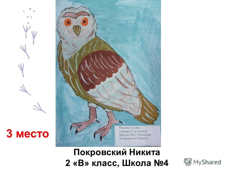 Покровский Никита 2 «В» класс, Школа 4 3 место