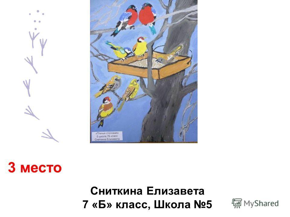 Сниткина Елизавета 7 «Б» класс, Школа 5 3 место