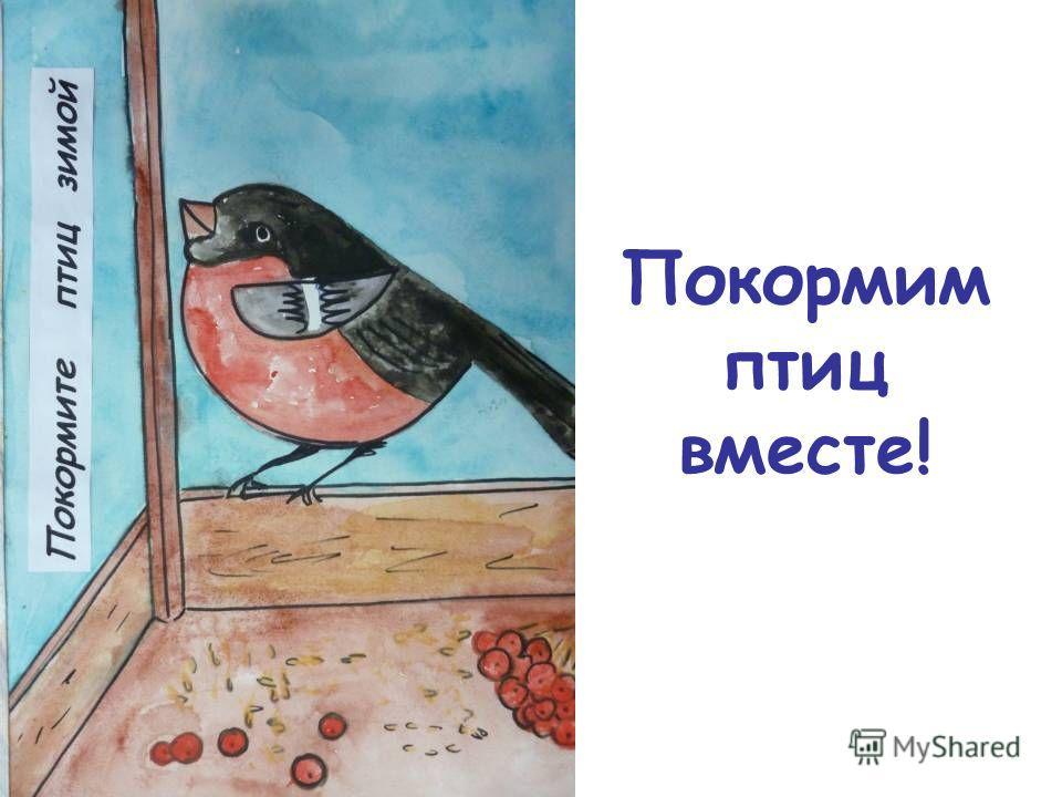 Покормим птиц вместе!