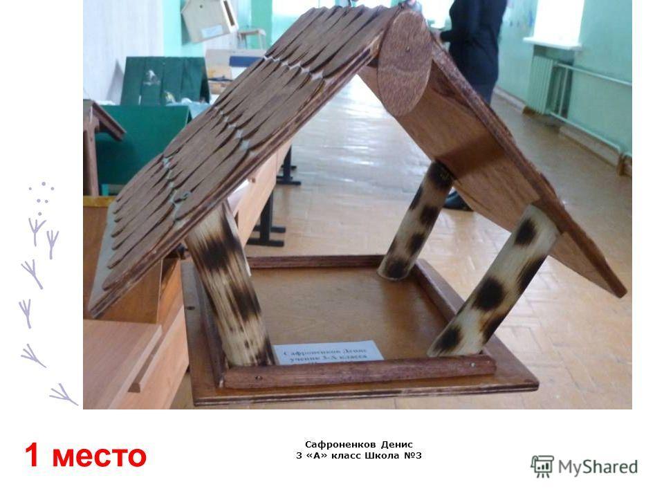 Сафроненков Денис 3 «А» класс Школа 3 1 место