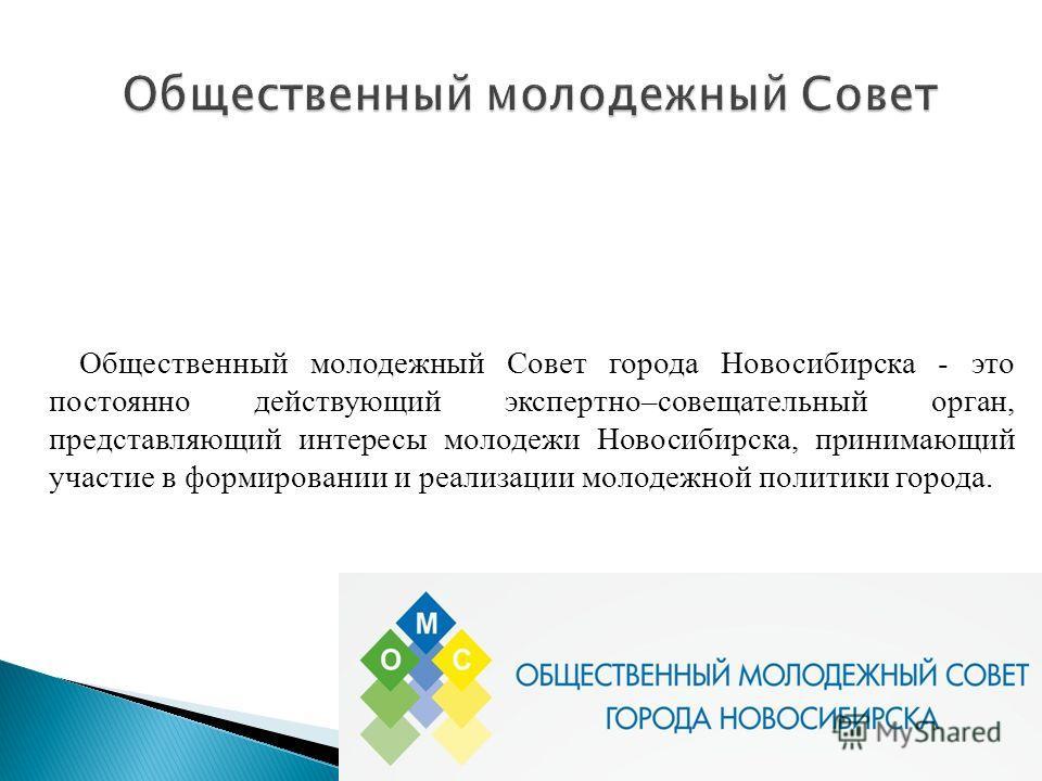 Общественный молодежный Совет города Новосибирска - это постоянно действующий экспертно–совещательный орган, представляющий интересы молодежи Новосибирска, принимающий участие в формировании и реализации молодежной политики города.