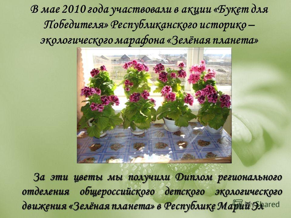 В мае 2010 года участвовали в акции «Букет для Победителя» Республиканского историко – экологического марафона «Зелёная планета» За эти цветы мы получили Диплом регионального отделения общероссийского детского экологического движения «Зелёная планета