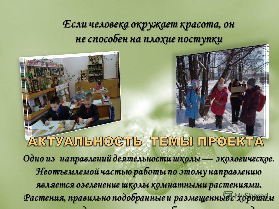 Одно из направлений деятельности школы экологическое. Неотъемлемой частью работы по этому направлению является озеленение школы комнатными растениями. Растения, правильно подобранные и размещенные с хорошим вкусом, создают психологически благоприятну