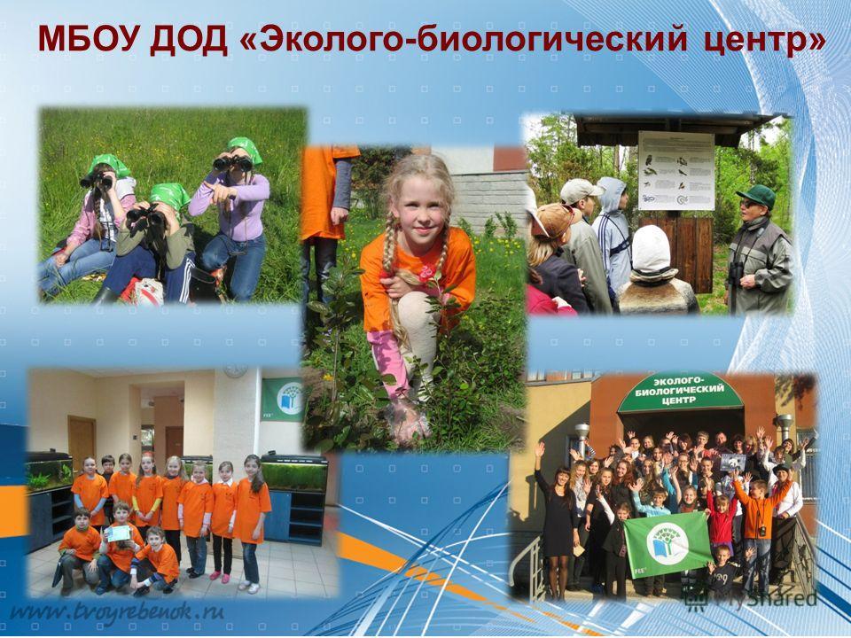 МБОУ ДОД «Эколого-биологический центр»