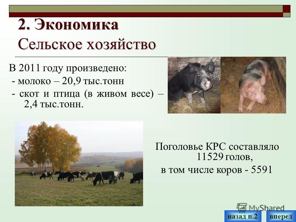 2. Экономика Сельское хозяйство В 2011 году произведено: - молоко – 20,9 тыс.тонн - скот и птица (в живом весе) – 2,4 тыс.тонн. Поголовье КРС составляло 11529 голов, в том числе коров - 5591 впередназад п.2
