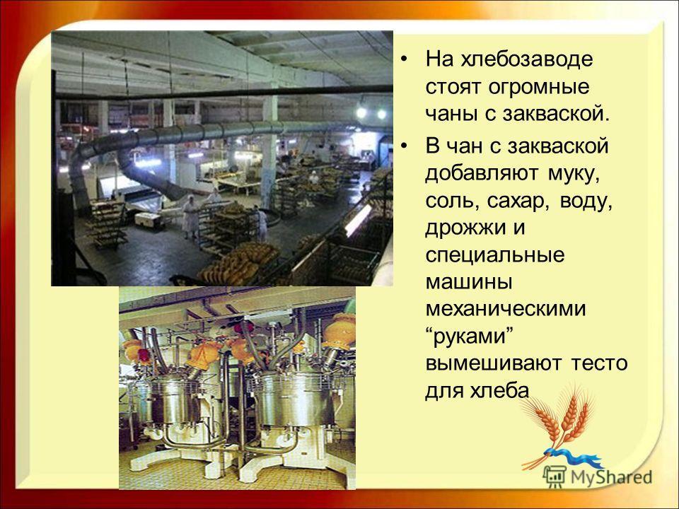 На хлебозаводе стоят огромные чаны с закваской. В чан с закваской добавляют муку, соль, сахар, воду, дрожжи и специальные машины механическими руками вымешивают тесто для хлеба