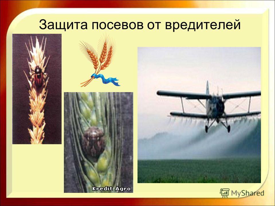 Защита посевов от вредителей