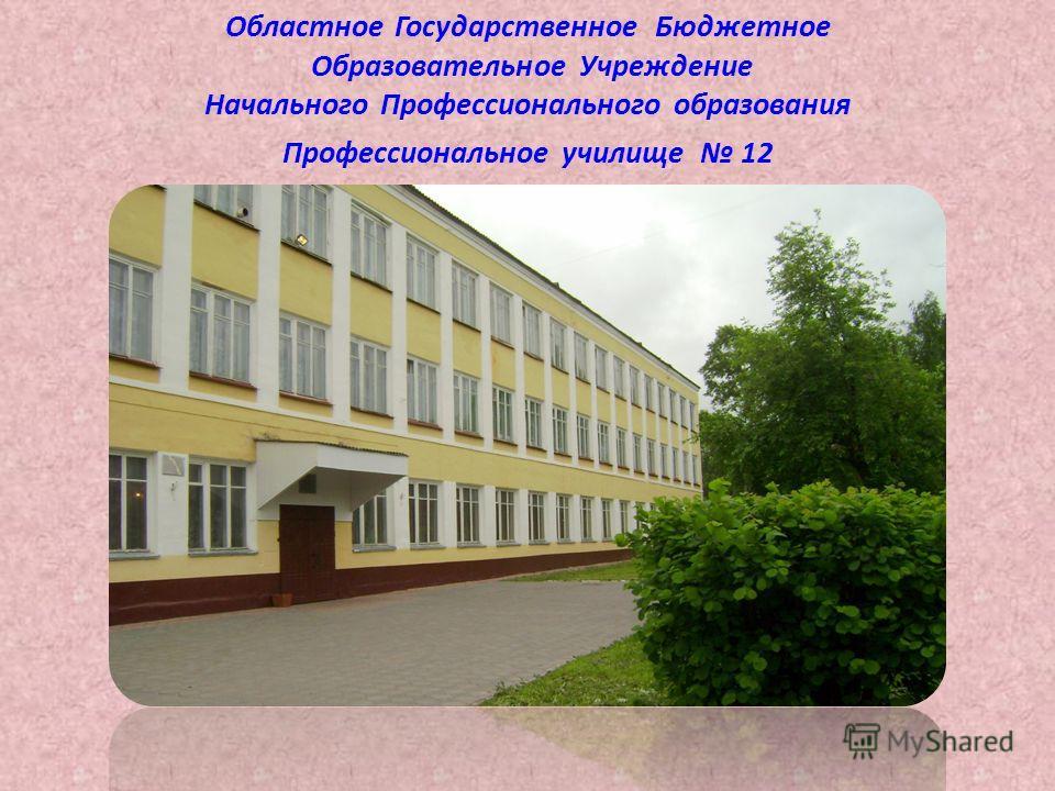Областное Государственное Бюджетное Образовательное Учреждение Начального Профессионального образования Профессиональное училище 12