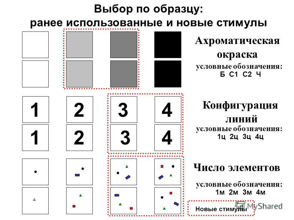 Конфигурация линий Число элементов Ахроматическая окраска условные обозначения: Б С1 С2 Ч 1234 1234 условные обозначения: 1ц 2ц 3ц 4ц условные обозначения: 1м 2м 3м 4м Выбор по образцу: ранее использованные и новые стимулы Новые стимулы