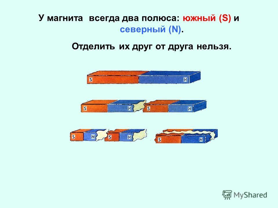 У магнита всегда два полюса: южный (S) и северный (N). Отделить их друг от друга нельзя.