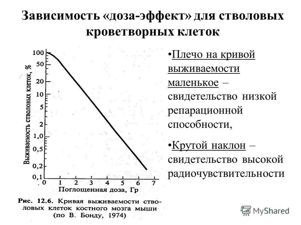 Зависимость «доза-эффект» для стволовых кроветворных клеток Плечо на кривой выживаемости маленькое – свидетельство низкой репарационной способности, Крутой наклон – свидетельство высокой радиочувствительности