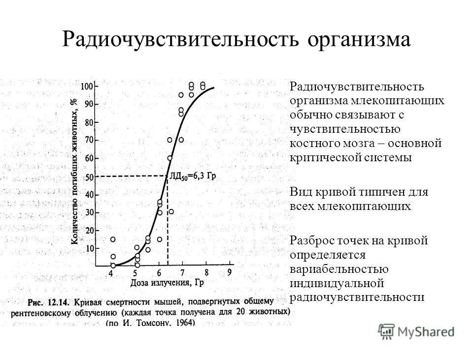 Радиочувствительность организма Радиочувствительность организма млекопитающих обычно связывают с чувствительностью костного мозга – основной критической системы Вид кривой типичен для всех млекопитающих Разброс точек на кривой определяется вариабельн