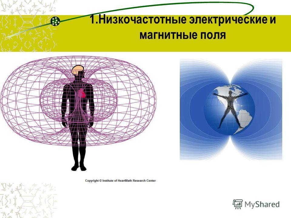 1.Низкочастотные электрические и магнитные поля
