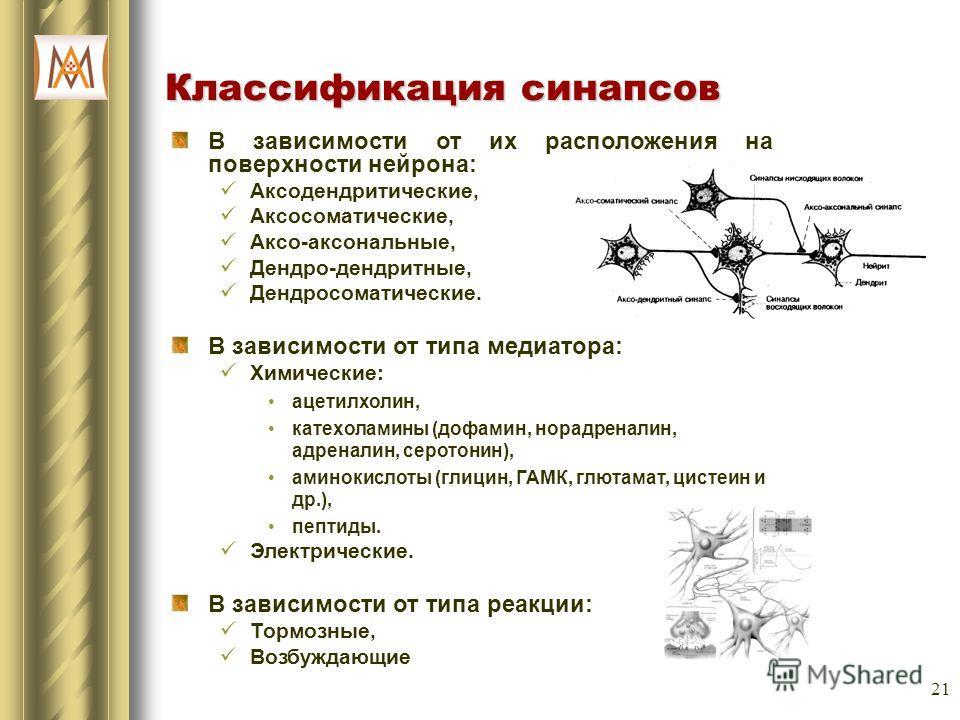 21 Классификация синапсов В зависимости от их расположения на поверхности нейрона: Аксодендритические, Аксосоматические, Аксо-аксональные, Дендро-дендритные, Дендросоматические. В зависимости от типа медиатора: Химические: ацетилхолин, катехоламины (