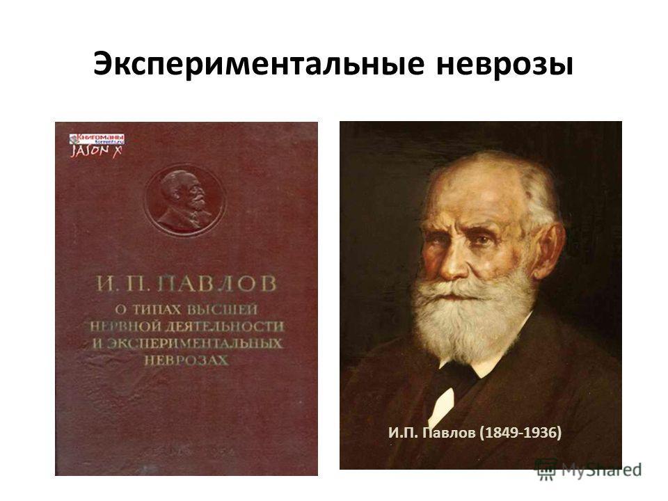 Экспериментальные неврозы И.П. Павлов (1849-1936)