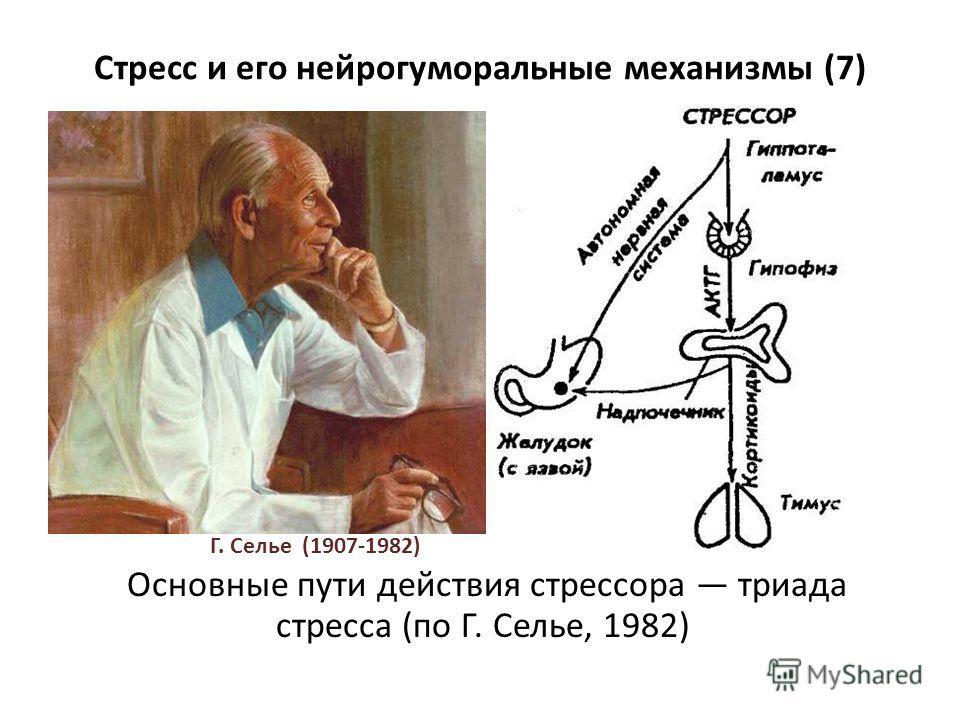 Стресс и его нейрогуморальные механизмы (7) Основные пути действия стрессора триада стресса (по Г. Селье, 1982) Г. Селье (1907-1982)