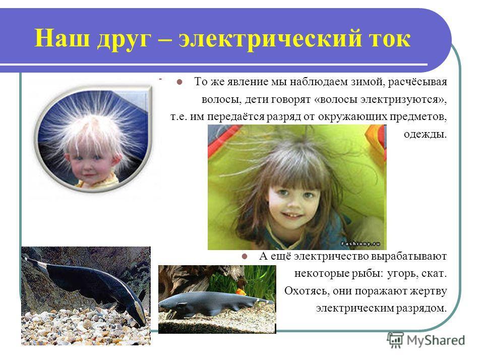 То же явление мы наблюдаем зимой, расчёсывая волосы, дети говорят «волосы электризуются», т.е. им передаётся разряд от окружающих предметов, одежды. А ещё электричество вырабатывают некоторые рыбы: угорь, скат. Охотясь, они поражают жертву электричес