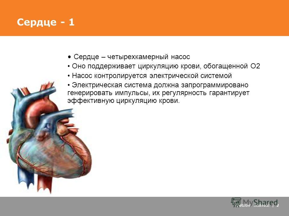 CARDIAC SCIENCE | 2 Сердце – четырехкамерный насос Оно поддерживает циркуляцию крови, обогащенной О2 Насос контролируется электрической системой Электрическая система должна запрограммировано генерировать импульсы, их регулярность гарантирует эффекти