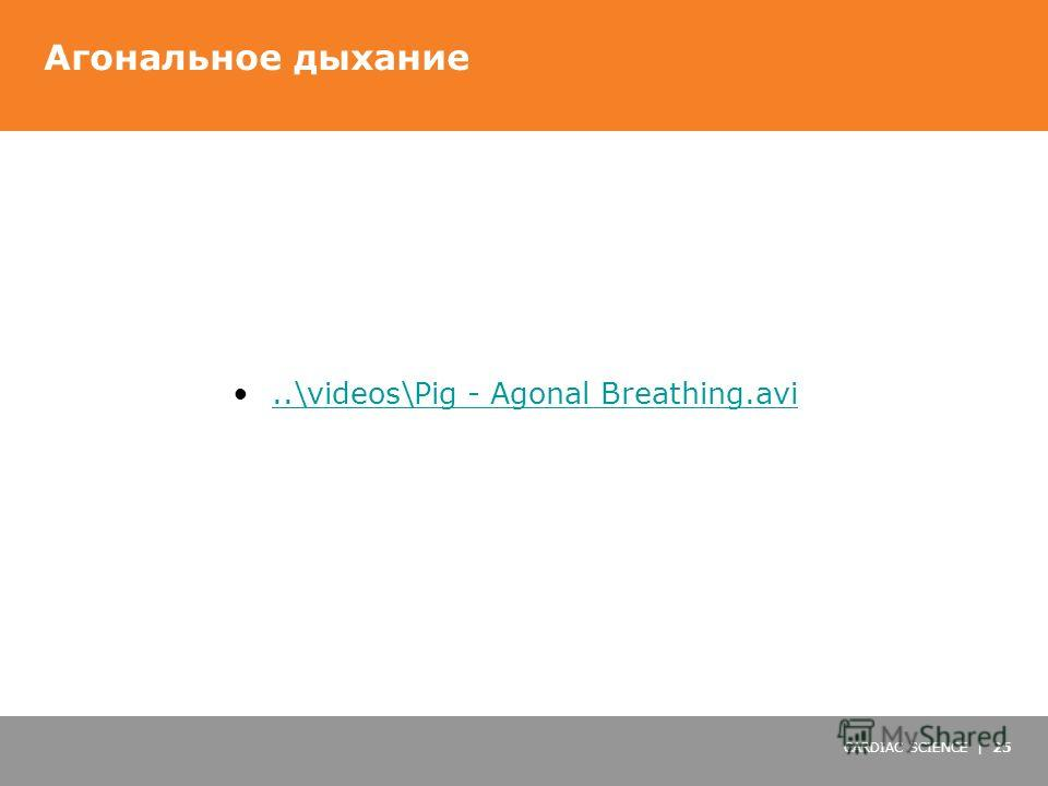 CARDIAC SCIENCE | 25 Агональное дыхание..\videos\Pig - Agonal Breathing.avi