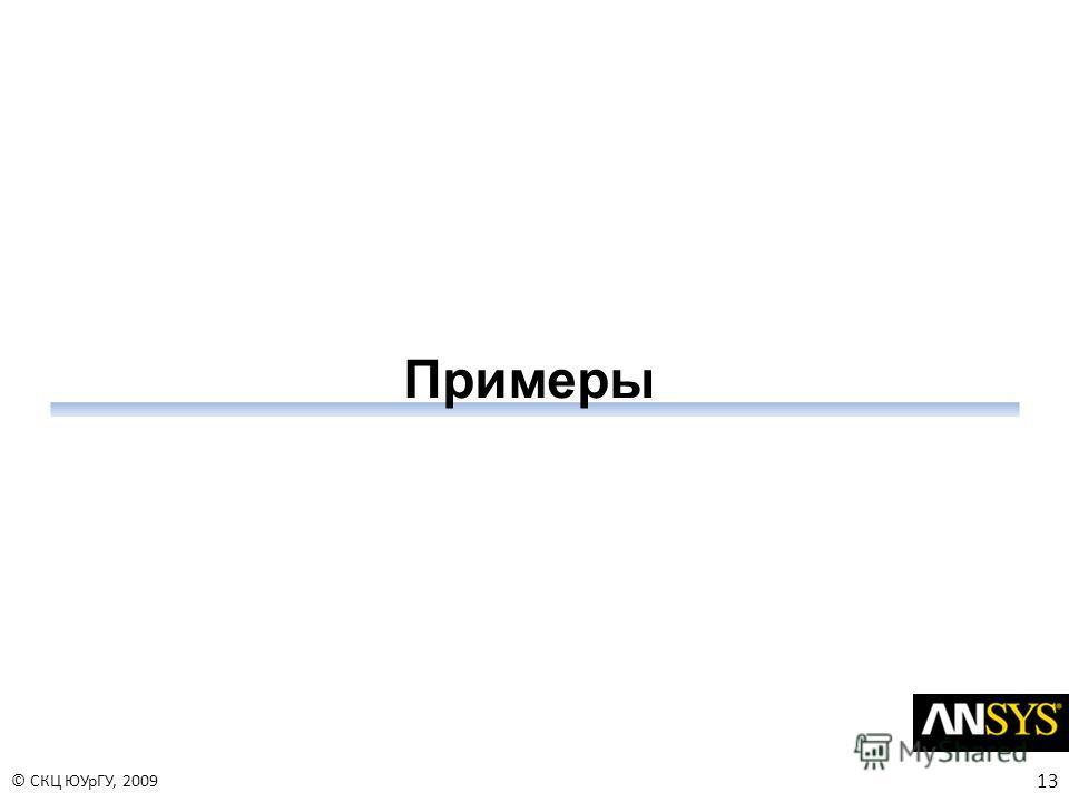13 © СКЦ ЮУрГУ, 2009 Примеры