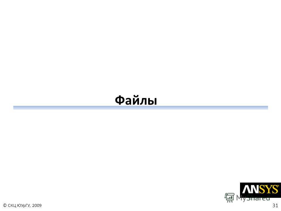 31 © СКЦ ЮУрГУ, 2009 Файлы