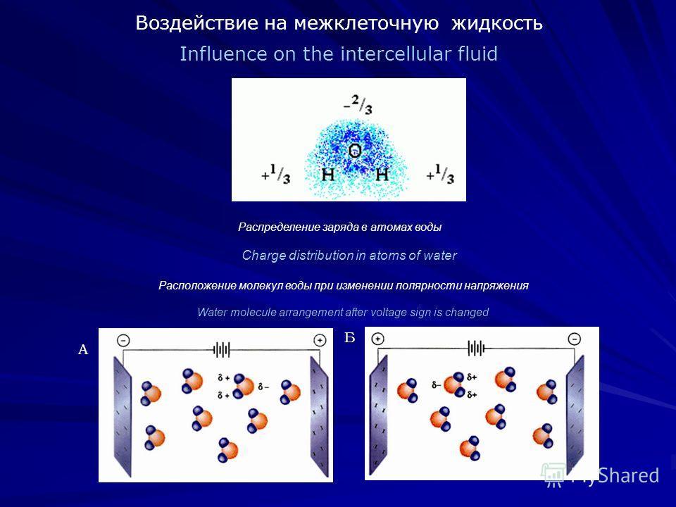 Воздействие на межклеточную жидкость Influence on the intercellular fluid Распределение заряда в атомах воды Charge distribution in atoms of water Расположение молекул воды при изменении полярности напряжения Water molecule arrangement after voltage