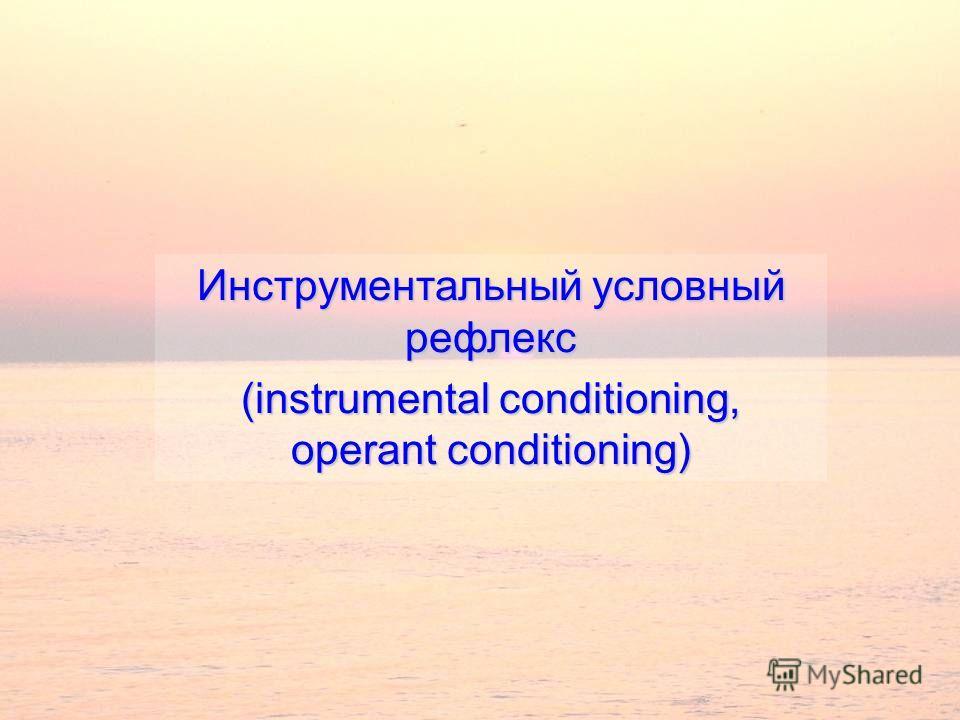 Инструментальный условный рефлекс (instrumental conditioning, operant conditioning)