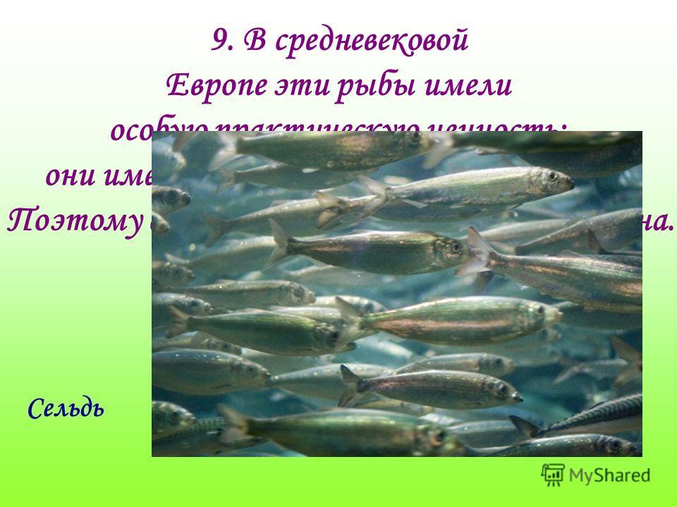 9. В средневековой Европе эти рыбы имели особую практическую ценность: они имеют примерно одинаковый размер, Поэтому стали своеобразной единицей обмена. Назовите эту рыбу ? Сельдь
