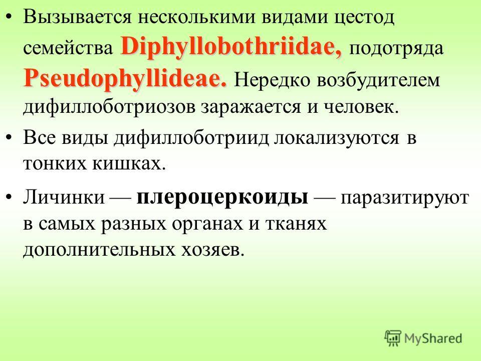 Diphyllobothriidae, Pseudophyllideae.Вызывается несколькими видами цестод семейства Diphyllobothriidae, подотряда Pseudophyllideae. Нередко возбудителем дифиллоботриозов заражается и человек. Все виды дифиллоботриид локализуются в тонких кишках. Личи