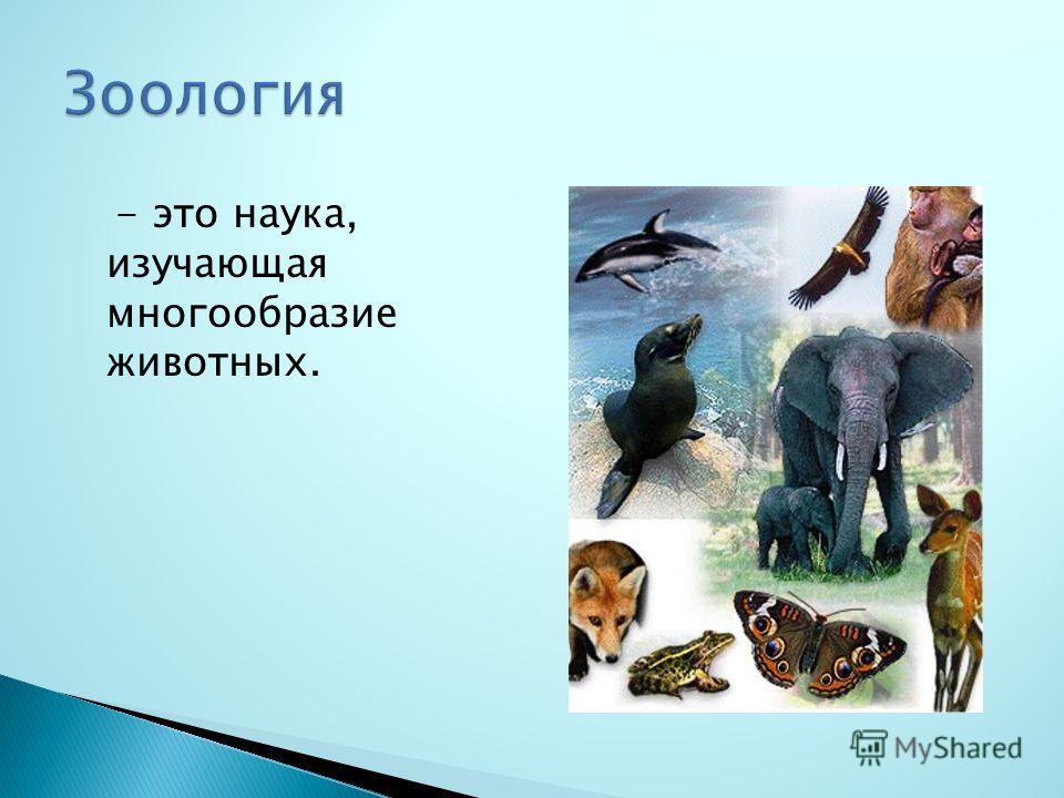 - это наука, изучающая многообразие животных.