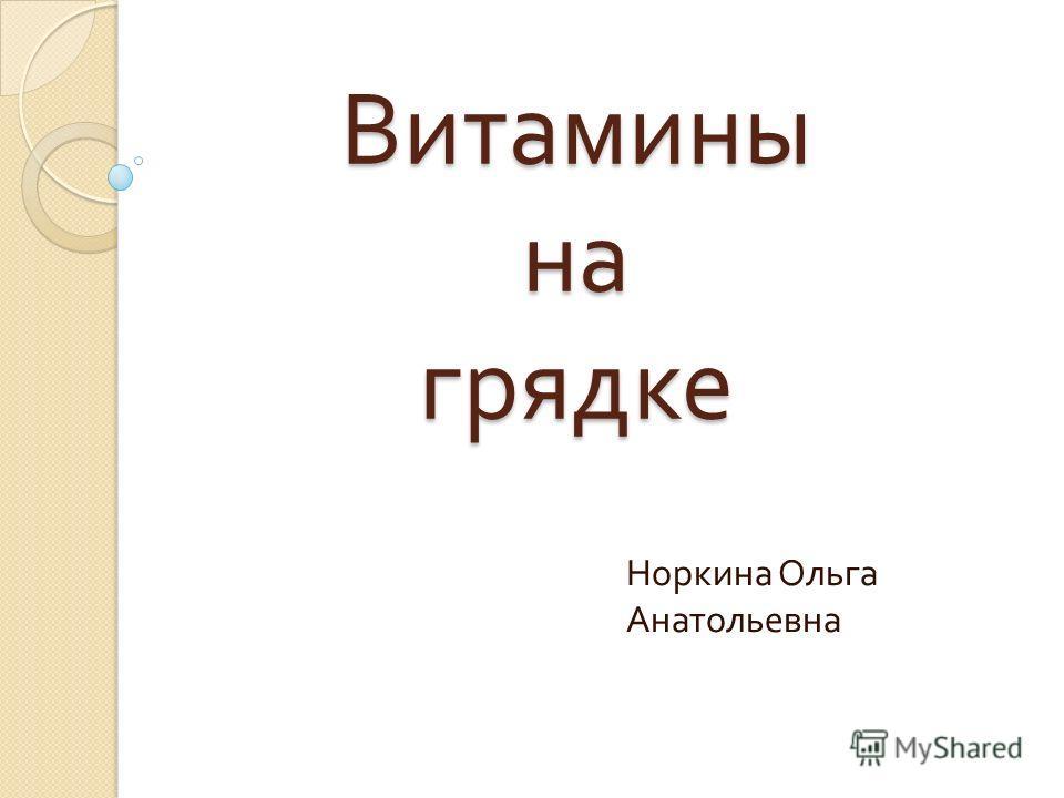 Витамины на грядке Норкина Ольга Анатольевна