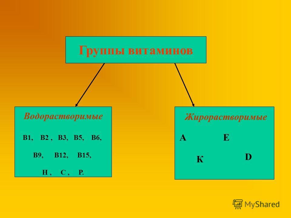 Группы витаминов Водорастворимые В1, В2, В3, В5, В6, В9, В12, В15, Н, С, Р. Жирорастворимые АЕ К D
