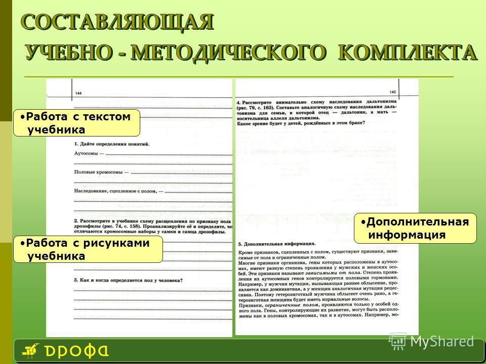 Дополнительная информация Работа с рисунками учебника Работа с текстом учебника