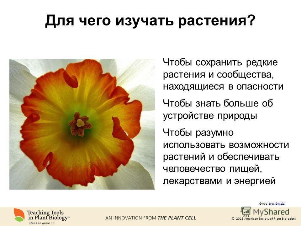 © 2013 American Society of Plant Biologists Для чего изучать растения? Чтобы сохранить редкие растения и сообщества, находящиеся в опасности Чтобы знать больше об устройстве природы Чтобы разумно использовать возможности растений и обеспечивать челов