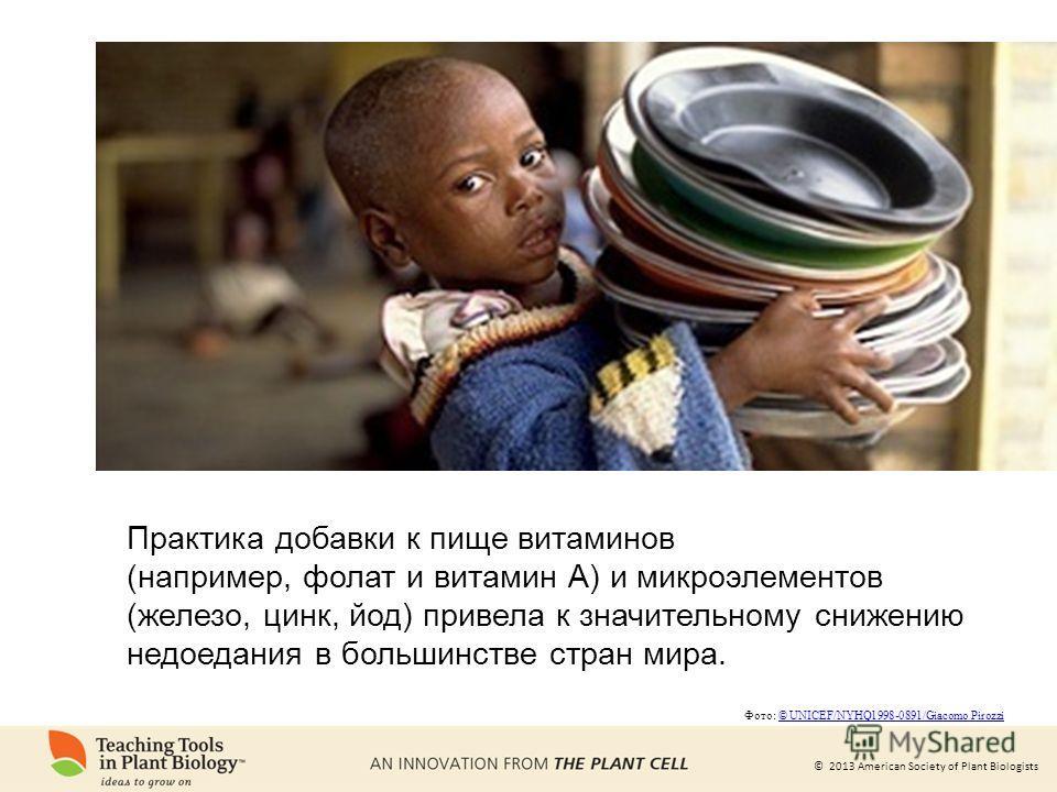 © 2013 American Society of Plant Biologists Практика добавки к пище витаминов (например, фолат и витамин А) и микроэлементов (железо, цинк, йод) привела к значительному снижению недоедания в большинстве стран мира. Фото: © UNICEF/NYHQ1998-0891/Giacom