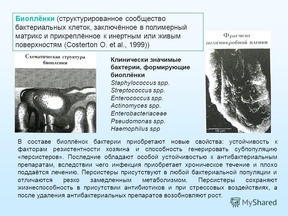 Клинически значимые бактерии, формирующие биоплёнки Staphylococcus spp. Streptococcus spp. Enterococcus spp. Actinomyces spp. Enterobacteriaceae Pseudomonas spp. Haemophilus spp. Биоплёнки (структурированное сообщество бактериальных клеток, заключённ