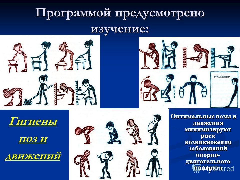 Программой предусмотрено изучение: Гигиены поз и движений Оптимальные позы и движения минимизируют риск возникновения заболеваний опорно- двигательного аппарата