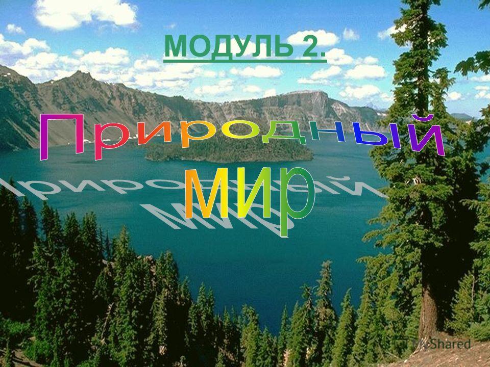 МОДУЛЬ 2.