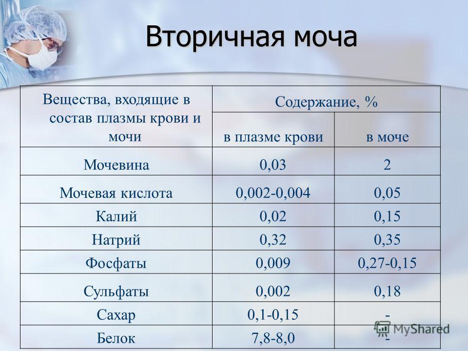 Вторичная моча Вещества, входящие в состав плазмы крови и мочи Содержание, % в плазме кровив моче Мочевина0,032 Мочевая кислота0,002-0,0040,05 Калий0,020,15 Натрий0,320,35 Фосфаты0,0090,27-0,15 Сульфаты0,0020,18 Сахар0,1-0,15- Белок7,8-8,0-