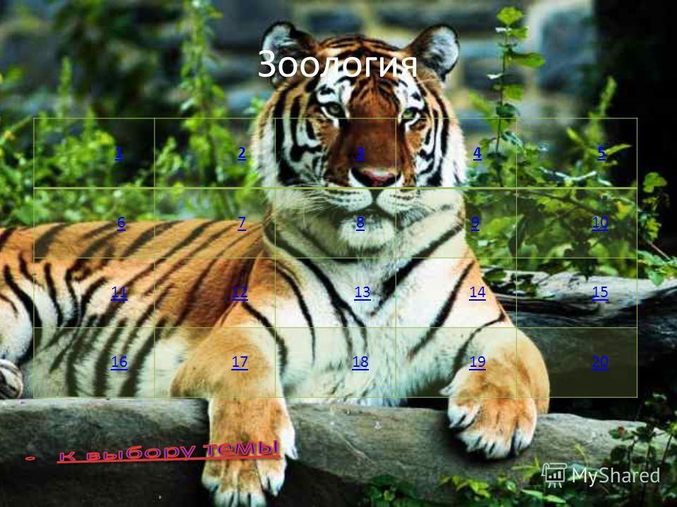 Зоология 1 2 3 4 5 6 7 8 9 10 11 12 13 14 15 16 17 18 19 20