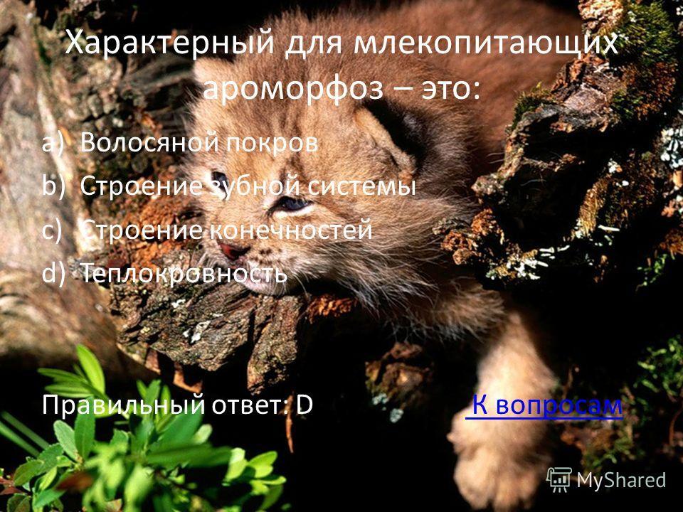 Характерный для млекопитающих ароморфоз – это: a)Волосяной покров b)Строение зубной системы c)Строение конечностей d)Теплокровность Правильный ответ: D К вопросам К вопросам