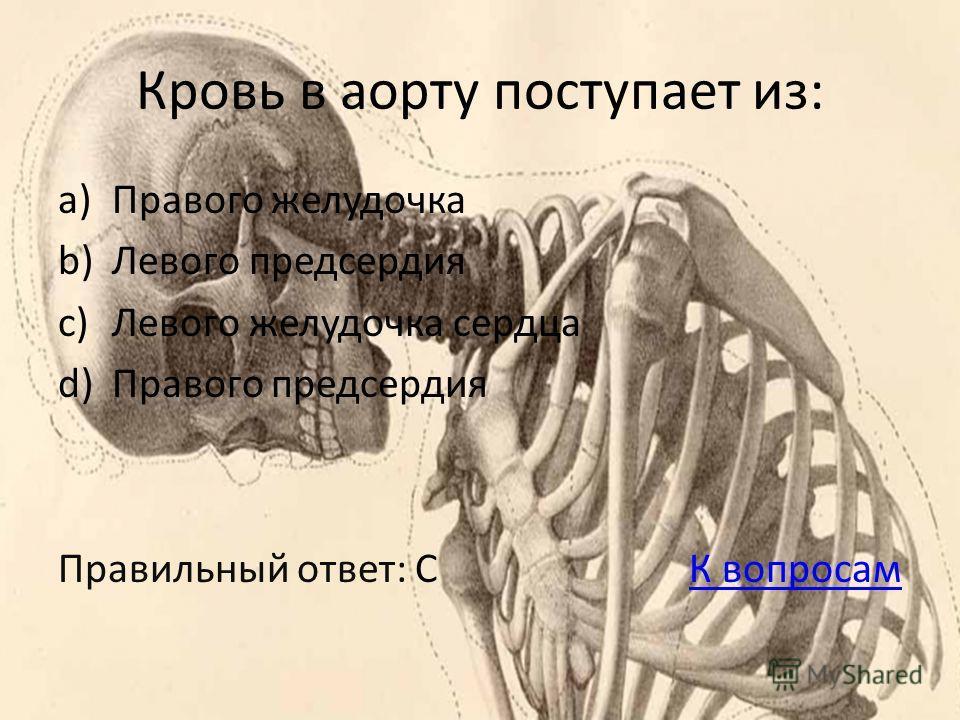 Кровь в аорту поступает из: a)Правого желудочка b)Левого предсердия c)Левого желудочка сердца d)Правого предсердия Правильный ответ: С К вопросамК вопросам