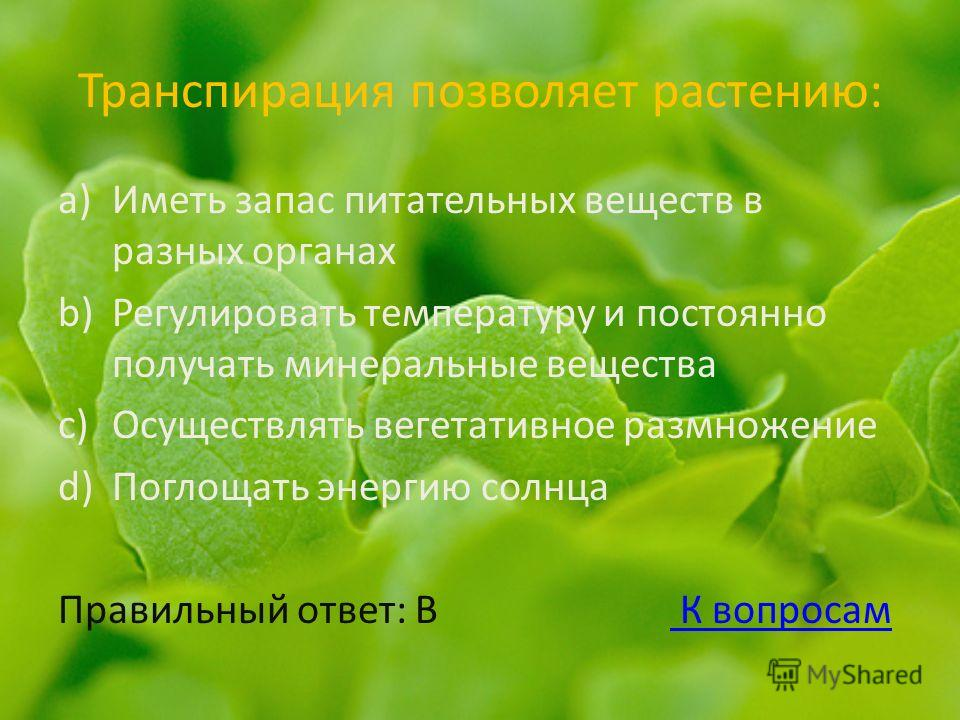 Транспирация позволяет растению: a)Иметь запас питательных веществ в разных органах b)Регулировать температуру и постоянно получать минеральные вещества c)Осуществлять вегетативное размножение d)Поглощать энергию солнца Правильный ответ: В К вопросам