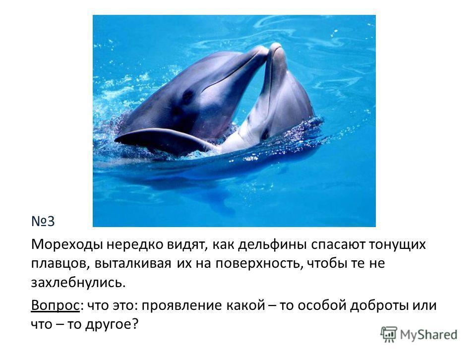 3 Мореходы нередко видят, как дельфины спасают тонущих плавцов, выталкивая их на поверхность, чтобы те не захлебнулись. Вопрос: что это: проявление какой – то особой доброты или что – то другое?