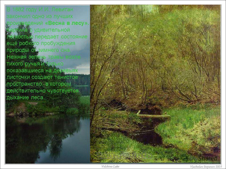 В 1882 году И.И. Левитан закончил одно из лучших произведений «Весна в лесу». Картина с удивительной лёгкостью передаёт состояние ещё робкого пробуждения природы от зимнего сна. Нежная зелень травы возле тихого ручья и только показавшиеся на деревьях