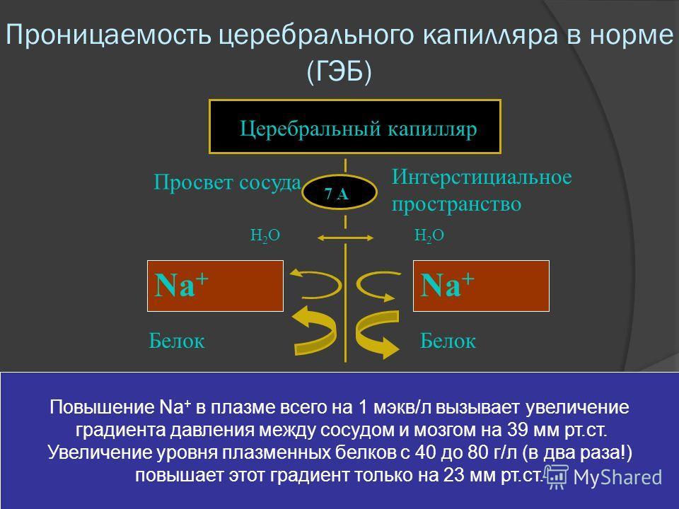 Проницаемость церебрального капилляра в норме (ГЭБ) 7 А Церебральный капилляр Интерстициальное пространство Просвет сосуда Белок Н2ОН2ОН2ОН2О Na + Повышение Na + в плазме всего на 1 мэкв/л вызывает увеличение градиента давления между сосудом и мозгом
