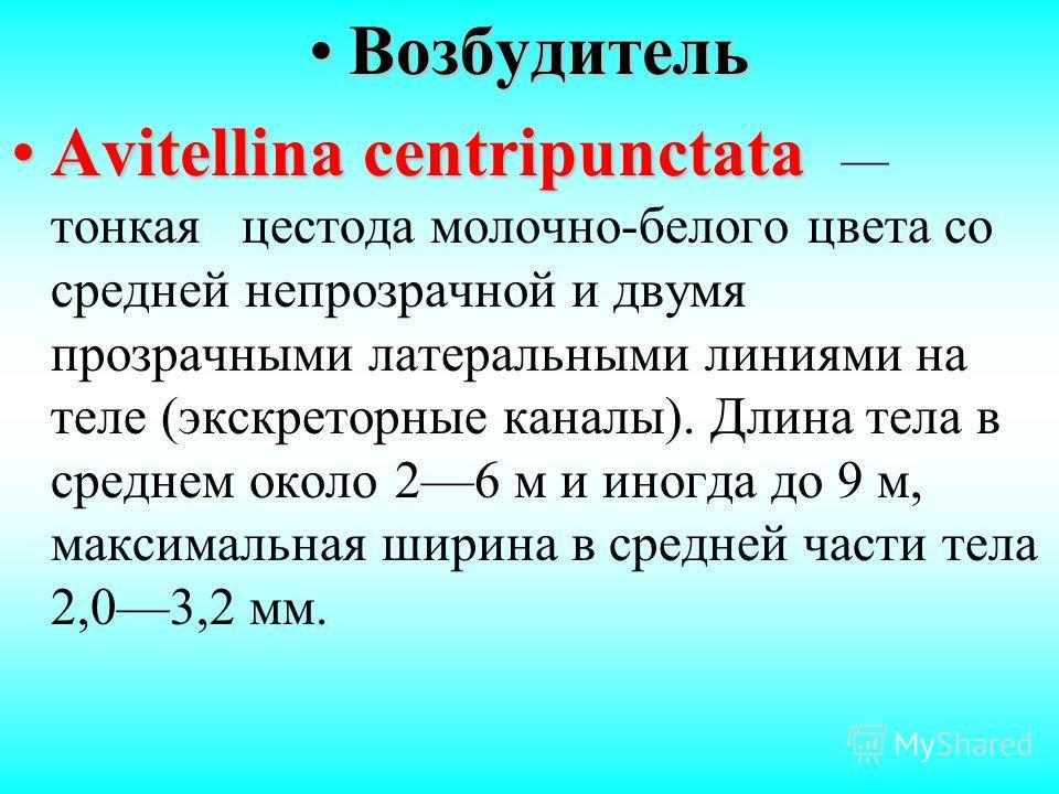 ВозбудительВозбудитель Avitellina centripunctataAvitellina centripunctata тонкая цестода молочно-белого цвета со средней непрозрачной и двумя прозрачными латеральными линиями на теле (экскреторные каналы). Длина тела в среднем около 26 м и иногда до