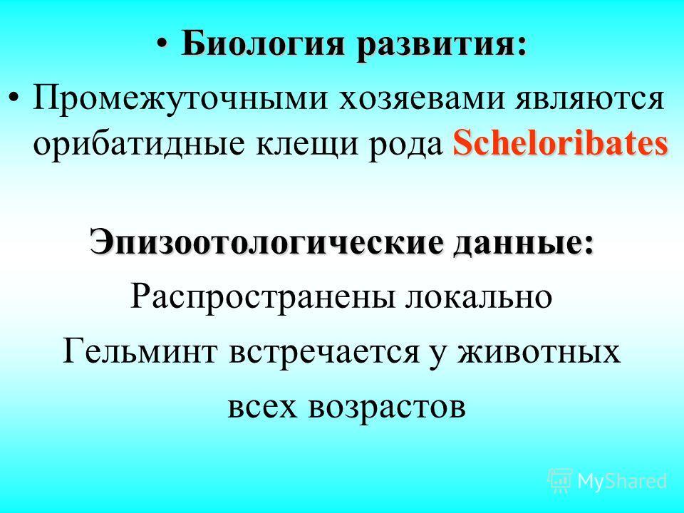 Биология развития:Биология развития: ScheloribatesПромежуточными хозяевами являются орибатидные клещи рода Scheloribates Эпизоотологические данные: Распространены локально Гельминт встречается у животных всех возрастов